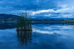 Lake Tutira (DaveHorton_) Tags: bluehour hawkesbay lake laketutira landscape longexposure nz newzealand tutira