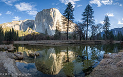 Sunrise on El Capitan (OJeffrey Photography) Tags: yosemite yosemitenationalpark elcapitan mountina mercedriver reflection panorama pano nikon d850 ynp california ca ojeffreyphotography ojeffrey jeffowens