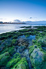 Playa de San lorenzo (ignaciofedz) Tags: playa de san lorenzo gijon musgo sea mar cantabrico asturias playasanlorenzo gijón xixón atardecer sunset marcantabrico rocas largaexposición