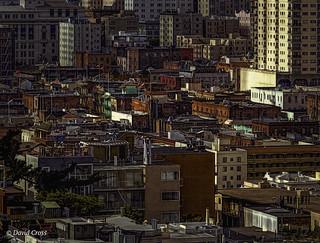 Density (An Urban Landscape)