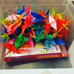 10%... WIP #origami #origamiart #papercraft #paper #paperart #craft #paperfolding #grue #crane #senbazuru #origamichallenge #sadakosasaki #hiroshima #1000grues #1000cranes (OrigamiInvasion) Tags: origami paperfolding papercraft paper craft