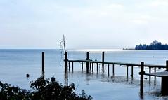 Un moment de quiétude. (Diegojack) Tags: morges vaud suisse d7200 paysages léman lac ponton brillance