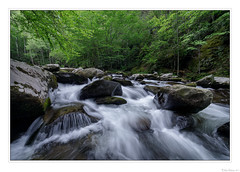 Mountain River Wild (John Cothron) Tags: 15mm americansouth blountcounty cpl canoneos5dmkiv carlzeiss cothronphotography distagon1528ze dixie eastsouthcentralstates greatsmokymountainnationalpark johncothron middlepronglittleriver southernregion tennessee thesouth townsend tremont us usa unitedstatesofamerica volunteerstate zeissdistagont2815mmze circularpolarizingfilter clouds cloudyweather creek flowing forest freshwater landscape morninglight nature outdoor outside river rock scenic spring stream water img17503170519 ©johncothron2017 mountainriverwild