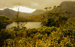 Cradle-Mountain_DSC0276 (Mel Gray) Tags: cradlemountainnationalpark tasmania landscape australia travel nature nationalpark naturallight