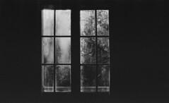 P56-2017-013 (lianefinch) Tags: blackandwhite blackwhite noirblanc noiretblanc bw nb argentique argentic analogique monochrome contraste contrast chiaroscuro clair obscur intérieur indoor fenêtre window door porte vitre soleil sun light lumière ombre shadow