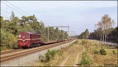 19 oktober 2017 - SMMR 2225 - Nunspeet (EnricoSchreurs) Tags: smmr 2200 2225 dbc 60501 trein train zug railway spoor track oktober october 2017 canon eos 6d