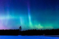 IMG_0044 (Marko Pennanen) Tags: aurora auroraborealis huhtilampi joensuu night nightphotography nightsky northernlights revontuli tohmajärvi valkeasuo yö yötaivas