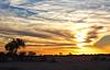 Kalahari (Zoom58.9) Tags: sonnenuntergang sonne sonnenschein himmel wolken bäume büsche gräser steppe kalahari abend abendstimmung afrika namibia romantik safari sunset sun sunshine sky clouds trees shrubbery grasses eve eveningatmosphere africa romantic landschaft landscape natur nature canon eos 50d gras baum tree