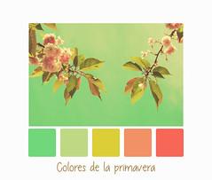 Colores de la primavera (M & Pi) Tags: primavera printemps spring paletasdecolor