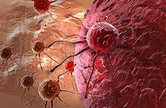 Nova descoberta dá um grande passo para a cura do Câncer (raisdata) Tags: bigdata cancer cura curadocâncer doenças rais raisdata