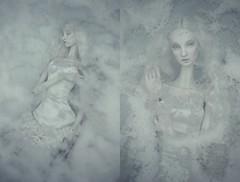 laura (dolls of milena) Tags: bjd abjd resin doll art portrait metis codie