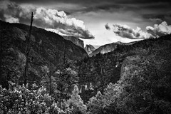 A Far Off View to Half Dome and El Capitan (Black & White) (thor_mark ) Tags: nikond800e lookingeast day6 triptopasoroblesandyosemite yosemitenationalpark capturenx2edited colorefexpro blackwhite silverefexpro2 halfdome pacificranges sierranevada yosemiterittersierranevada centralyosemitesierra yosemitevalley outside trees hillsideoftrees blueskieswithclouds mountains mountainsindistance mountainsoffindistance evergreens landscape nature 3000feethighgranitemonolith 900meterhighgranitemonolith elcapitan totokonoolah mountainvalley sentinelpoint sentinelrock bigoakflatrd alongbigoakflatrd elephantrock project365 california unitedstates