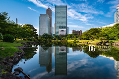 Look Across The Water - Tokyo, Japan (davidgutierrez.co.uk) Tags: photography davidgutierrezphotography city art architecture nikon urban travel color night blue photographer tokyo japan uk skyscraper 東京 도쿄 токио tokio 日本 structure nippon minato tokyometropolis capital megacity modern beautiful landmark metropolis building pentax wwwdavidgutierrezcouk colors asia colour colours vivid vibrant street road traffic colourful cityscape neon buildings transport contemporary edgy cinematic touristattraction skyline highrise pentaxk5iis shinjuku sompo sky 2015 cityview cyberpunk pond water london