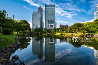 Look Across The Water - Tokyo, Japan