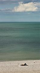1537 SOLITUDE (rustinejean) Tags: rustine une mer sea plage beach vert bleu blue green galets seule
