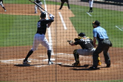IMG_3279 (Joseph Brent) Tags: yankees spring training tampa florida steinbrenner field aaron judge