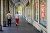 Just walking (*Capture the Moment*) Tags: 2016 altstadt bern berne bokeh dof details fotowalk historiccenter menschen people schweiz sommer sonne sonya7m2 sonya7mii sonya7ii sonyilce7m2 strassenscene streetlife summer switzerland wetter zeissbatis1885