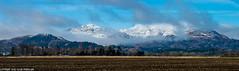 DSC_6430-Pano: Ben Halton from the base of Bogton Braes, Comrie, Scotland  [Explored] (Colin McIntosh) Tags: comrie strathearn winter nikon d610 105mm f25 pc manual focus