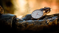 Brathwait Watch (Jacques P Raymond) Tags: calgary alberta canada ca watch brathwait