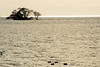 琵琶湖・湖北12・Lake Biwa (anglo10) Tags: 長浜市 滋賀県 japan lake 湖 琵琶湖 夕景 sunset