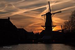 Molen de Kameel (Mardycat61) Tags: schiedam molen mill dutch netherlands sunset