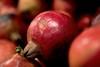 Pomegranate  /  art (Rajavelu1) Tags: fruits pomegranate depthoffield colours macrophotography macro art creative dslr availablelight handheld