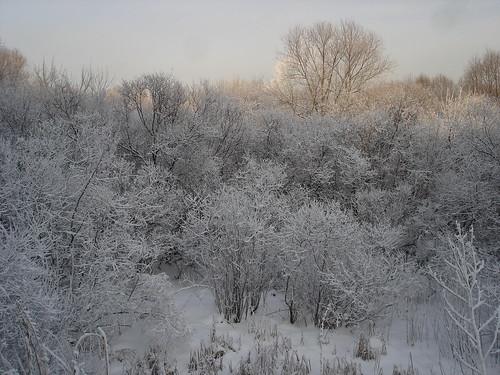 Зимний пейзаж ©  ayampolsky
