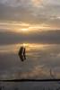 _DSC0119 (johnjmurphyiii) Tags: 06416 clouds connecticut connecticutriver cromwell dawn originalnef riverroad sky sunrise tamron18400 usa winter johnjmurphyiii