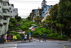 World's crookedest street (Rabican7) Tags: california sanfrancisco urban streetphotography crooked sights green city attraction tourists lombard hairpins downhill