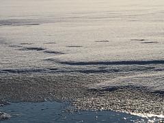 Harz-Oderbrueck_e-m10_1012074124 (Torben*) Tags: sigma60mmf28dn olympusomdem10 rawtherapee harz urlaub vacation winter oderteich see lake ice eis schnee snow