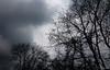 Short before the rain (frankdorgathen) Tags: minimalism minimalistic ruhrpott ruhrgebiet mülheimanderruhr silhouette tree cloud sky nature winter