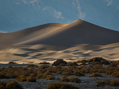 On Top Of The Dunes (Jeffrey Sullivan) Tags: deathvalleynationalpark death valley national park sand dunes california desert stovepipewells inyocounty usa landscape photography canon eos 70d road trip jeff sullivan photo copyright november 2015 travel united states 240mm mesquite flat