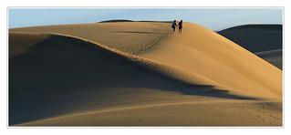 Balade dans les dunes -  Walk in the dunes
