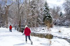 Making Snowy Tracks (aaronrhawkins) Tags: snow snowstrom stream river provo utah boots tracks winter bridge cold spring bright weather kellie joshua aaronhawkins