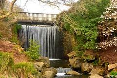 Conservatoire Botanique (Tof-H) Tags: conservatoire botanique brest bretagne brittany france