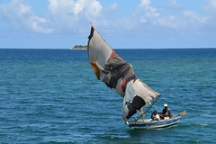 Recycling Labadee Haiti Style   Nikon D3100. DSC_0986. (Robert.Pittman) Tags: nikond3100 d3100 sigma18300mmf3563dcmacrolens 72mmuvfilter iamnikon cruise onboardaboat coast sea sails boat water bay landscape island sky gulfofgonave labadee haiti caribbean