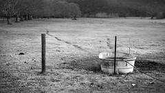 NO STOCK (scatrd) Tags: nikon mynikonlife australia 2016 nsw paddock trough country hose newsouthwales jasonbruth queensbirthdayweekend nikond810 blackandwhite d810 queensbirthdayweekend2016 fence centralmacdonald au