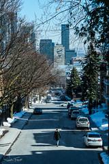 Rus Crescent (www.sophiethibault.ca) Tags: 2018 ville buildings canada urbain québec mars montréal leonardcohen rue voitures arbres