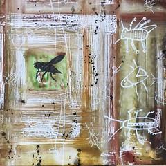 mosca,40x40 (luis lara cabrera) Tags: lara pintura obra color mixta mosca juego circo arte art luis abstracto gestual
