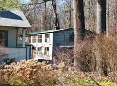 CHARLIES BIGGER COOP IN MARCH 2018 (richie 59) Tags: ulstercountyny ulstercounty newyorkstate newyork unitedstates trees winter townofesopusny townofesopus richie59 overgrown stremyny stremy america outside weekday tuesday 2018 march62018 march2018 2010s hudsonvalley midhudsonvalley midhudson ny nys nystate usa us woodenhouse oldwoodenhouse house oldhouse neighborhood chickencoop oldchickencoop woodenbuilding weeds