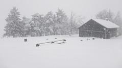 Slivnica (happy.apple) Tags: cerknica slovenia si slovenija slivnica winter snow sneg zima notranjska snowstorm
