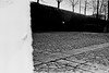 "2018-03-08-0007 (alcino.diaspereira) Tags: exakta varex iia ""eastman kodak doublex"" ""sitio do cano amarelo"" amarelo zeiss flektogon 35mm"