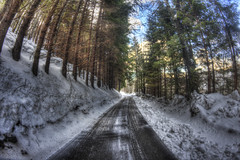 #201 (mariopolicorsi) Tags: mariopolicorsi canon eos 700d fisheye samyang 8mm hdr hdrawards simplysuperb photoshop photomatix abetone toscana tuscany alberi trees forest bosco inverno winter marzo march neve snow strada street italia italy europa europe travel viaggio 2018 natura nature
