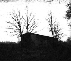 House of fear (Rosenthal Photography) Tags: washiw25 ff120 landschaft tetenaleukobrom1120°c3min bnw schwarzweiss anderlingen mamiya7 bäume 6x7 pflanzen mittelformat städte winter bw februar 20180206 analog asa25 dörfer siedlungen landscape mood february nature dark darkness mediumformat blackandwhite contrast endofdays daysofdarkness mamiya 80mm f4 washi washiw 6asa tetenal eukobrom 11 epson v800 barn