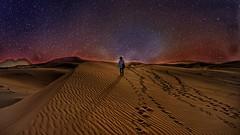 Foot Prints (Sanjiban2011) Tags: abudhabi uae liwa desert desertscape composite footprints single alone sand sanddunes nature outdoor landscape travel nikon d750 tamron tamron2470 fullframe