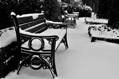 Seat Anyone? (Maria .... on here to learn and be inspired.) Tags: cold snow bench solitude bokeh outdoors parks park weather