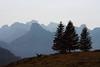 Kander Silhouette (EP Diederiks) Tags: switzerland schweiz alpen alps mountains bergen berge kandersteg berner oberland bernese bern swiss landscape trees silhouette summer sommer grass sky skyline nature natur hiking wandern view