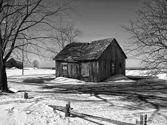 180228-44 La petite vieille (clamato39) Tags: maison maisonabandonnée old oldhouse abandoned abandon noiretblanc blackandwhite bw monochrome neige snow hiver winter beauce provincedequébec québec canada