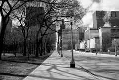 Tall (ancientlives) Tags: chicago illinois il usa city cityscape skyline skyscrapers streetphotography street architecture buildings towers michiganavenue downtown loop artinstitute park trees nature lamps walking shadows wednesday march 2018 winter mono monochrome blackandwhite bw ngc nikon nikonv1 nikon10mm 10mm