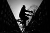 V (Birdhouse camper) Tags: copenhagen denmark bicycle contrast silhouette fujifilm fuji xt2 fujixt2 street blackandwhite blackwhite